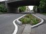 Alma Road Raingardens and Mural
