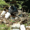 Is plastic pollution our generation's legacy?