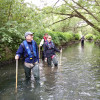 Outfall safaris are tackling river pollution – and you can help as a citizen scientist!