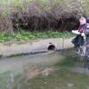Volunteer for new Outfall Safaris on the Ravensbourne & Ingrebourne