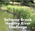 SalmonBrook