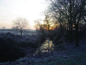 frostyingrebourneharoldwoodpark