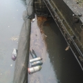 Where the Moselle River joins the Lea at Markfield Park, very polluted Oct 2012