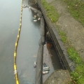 Where the Moselle River joins the Lea at Markfield Park, very polluted Oct 2012 2