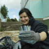 Academics find plastic in two breeds of River Thames fish