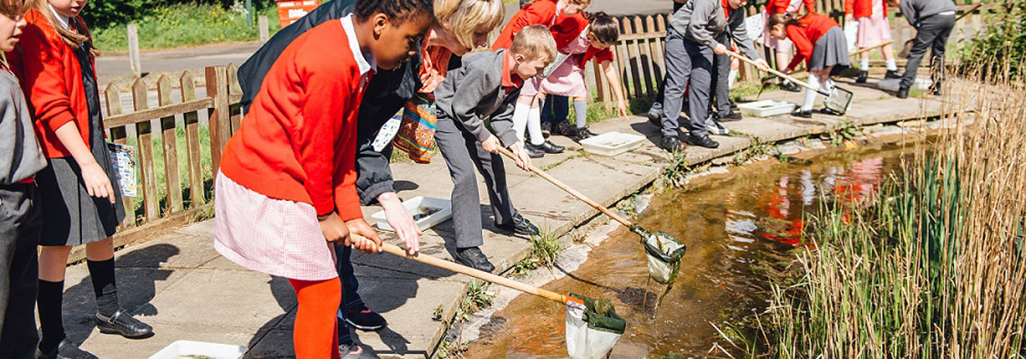 children In school uniform pond dipping