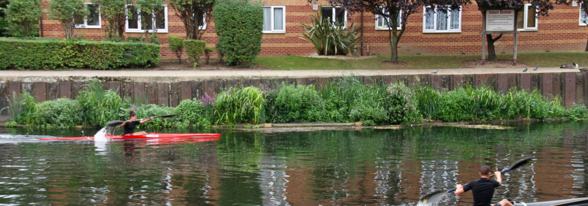 people in canoes near a new reedbed