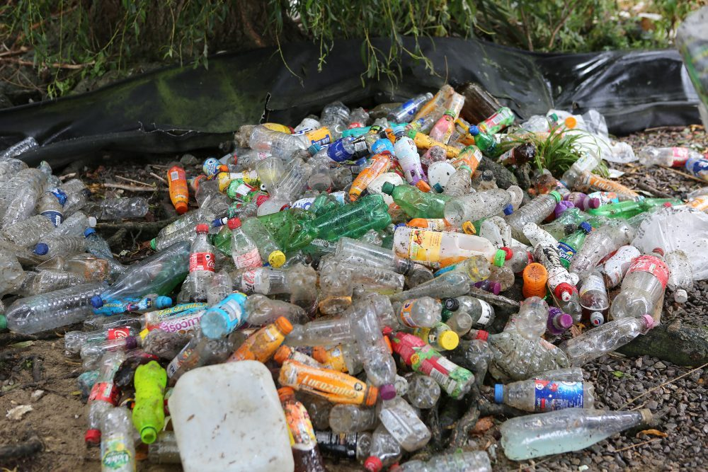 a pile of plastic drinks bottles on the shore of the Thames