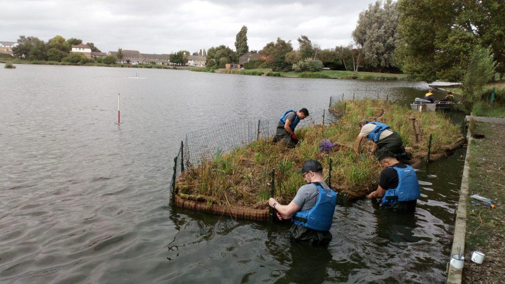 Volunteers installing floating island reedbeds